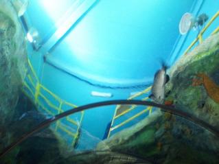 Watertunnel