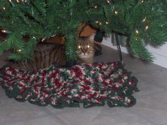 Arnoldchristmas